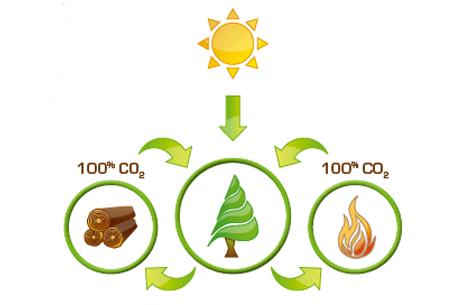biomassa-TECNOSOLAR
